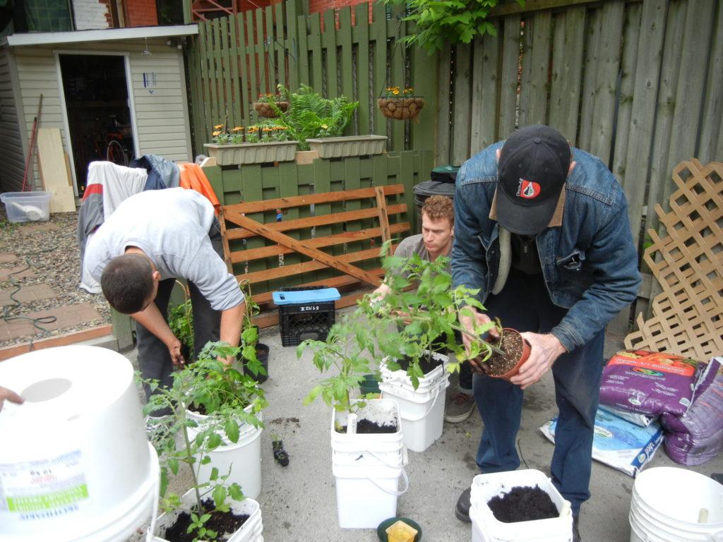Volunteering Eco-quartier Peter-McGill