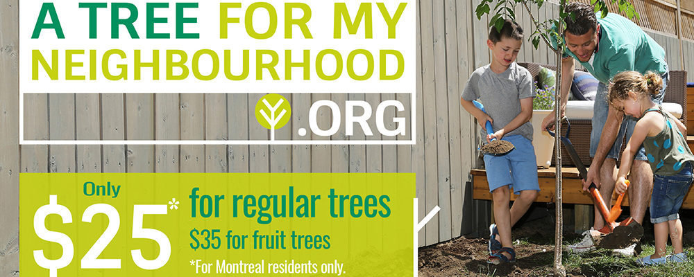 A Tree for my Neighbourhood