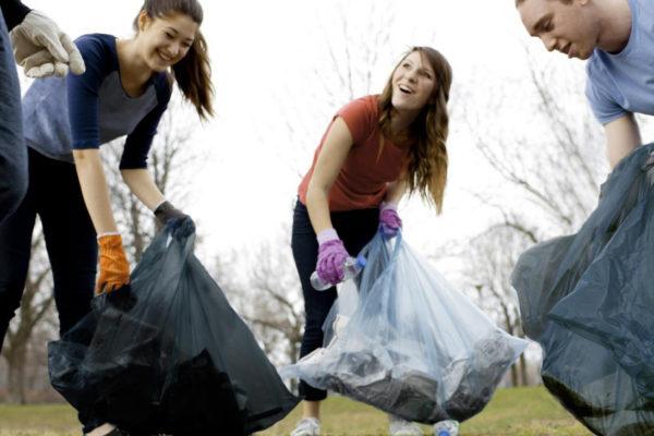 Activité de nettoyage