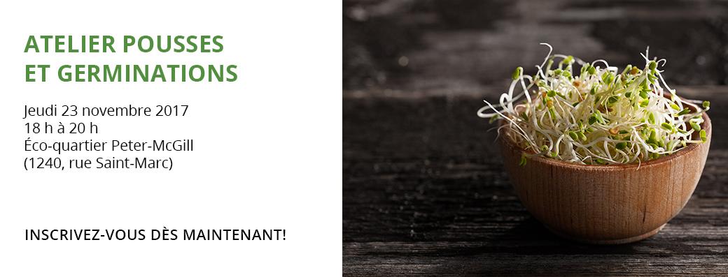 pousses-germinations